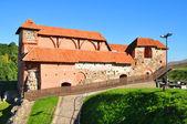 Vilnius, litauen. blick auf die stadt von vilnius. vilnius, turm von gediminas, symbol von vilnius — Stockfoto