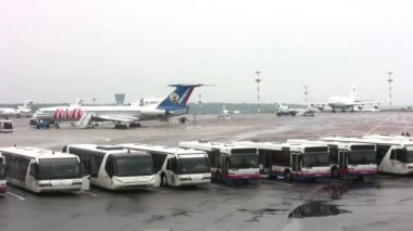 Busses stand in airport territory near control office, time lapse — Stock Video