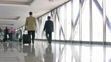Företag i korridor — Stockvideo