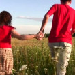 Couple in field — Stock Video