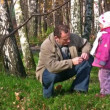 Royalty-Free Stock Vektorfiler: Senior with little girl in autumn park