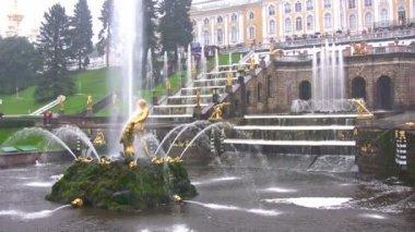 Sansón y la fuente del león, peterhof, rusia — Vídeo de stock