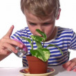 Stock Video: Child pour plant