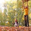 Stock Video: Mother with child throw leaves