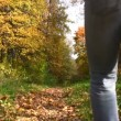 Behind walking mother with children in autumn park. — Stock Video