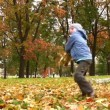 Stock Video: Child throw autumn leaves.