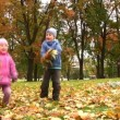 Children in autumn park. — Stock Video