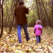 Walking father with little girl in autumn park — Stock Video #12356267