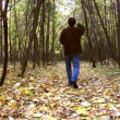 Man throw leaves in autumnal wood — Stock Video