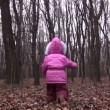 Behind walking father and little girl in winter park — Stock Video #12358132