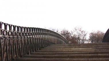 Mulher na ponte — Vídeo Stock