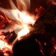 Stock Video: Burning fire firewood and coal in stove