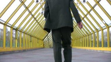 Behind walking jumping businessman — Stock Video