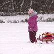 Little girl with Santa on sled — Stock Video #12467280