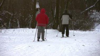 Rijden op ski in hout — Stockvideo