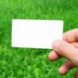 Male hand holding business card on grass - Stok fotoğraf