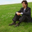 Handsome man in suit get lying on green grass — Stock Video