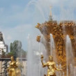 Fountain friendship at All-Russia Exhibition Centre, close up, from top  bottom - Stock Photo