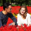 Stock Video: Couple sit in park in flowers, smell flowers and smile