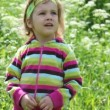 Little girl in the purple blouse on the green field — Stock Video