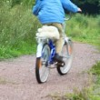 Stock Video: Boy and man riding bicycles in park, from camera