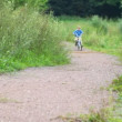 Boy riding bicycle in park, to camera — Stock Video #13787029