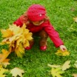 Little girl collect leafs in autumn park — Stockvideo #13787129