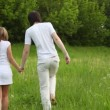 Young man and girl walking away holding hands — Stock Video