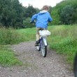Stock Video: Man and boy riding bicycles in park, from camera