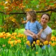 Woman talking with little girl in park among blossoming tulips - Stock Photo