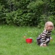 Little girl playing with bucket and balls — Stock Video