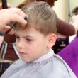 Stock Video: Child gets haircut in tonsorial