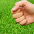 Counting male hand on grass — Stock Video #13788202