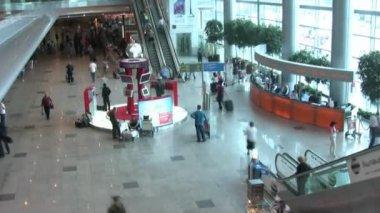 Hurry in aeroport — Stock Video