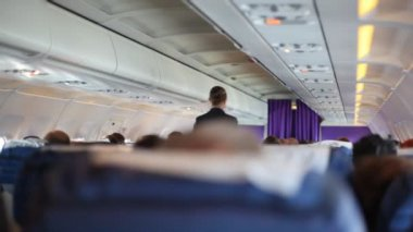 Steward in plane salon — Stock Video