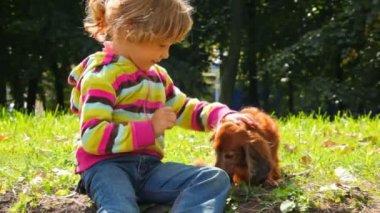Trochę dziewczyna głaskania psa w parku, patrząc na siebie — Wideo stockowe