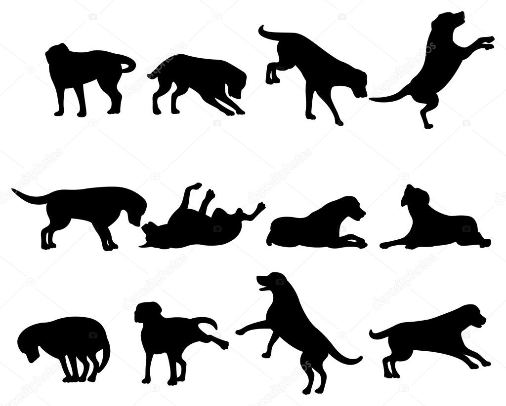 Dog silhouette — Stock Vector #16645621