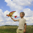 Boy flying toy airplane in the field — Stock Video