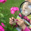 Stock Video: Girl observe pink flowers through magnifying glass in summer