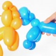 Balloon dogs in young human hands white background - Stock Photo