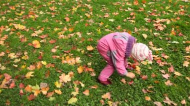 Little girl gathering autumn maple leaves and stretching out to camera — Stock Video
