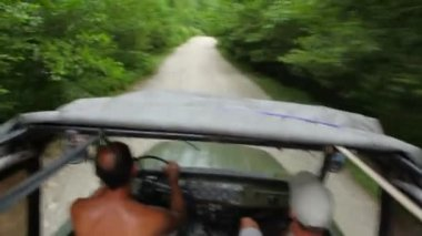 Riding off-road vehicle in forest, video from within car — Stock Video
