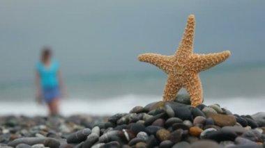 Sea star standing on stones in beach, defocused woman walking in background — Stock Video