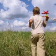 Boy running through the field with airplane — Stock Video