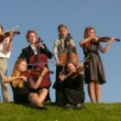 Six musicians on meadow plays stringed instruments — Vidéo
