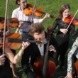 Musicians plays music on stringed instruments — Vidéo