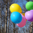 Multicoloured balloons waving by wind on bush in spring forest — Stock Video