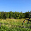 Couple on bicycles talks in field — Stock Video