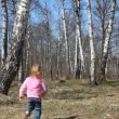 Little girl runs from camera to spring brich grove — Stock Video
