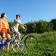 Man and woman with bicycles talks in field — Stock Video